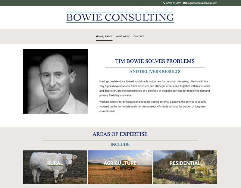 Simple CV site done in WordPress for Bowie Consulting